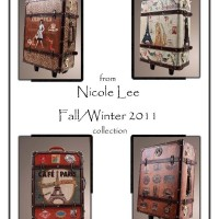 Travel Cases by Nicole Lee