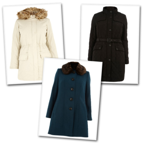 Plus size winter coats from Evans.