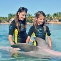 Dolphin Cay in Atlantis Bahamas