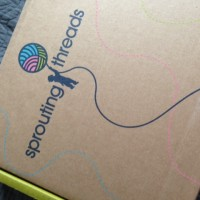 "Sprouting Threads: The ""Stitch Fix For Kids!"""